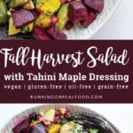 Fall Harvest Salad with Tahini Maple Dressing