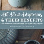 All About Adaptogens
