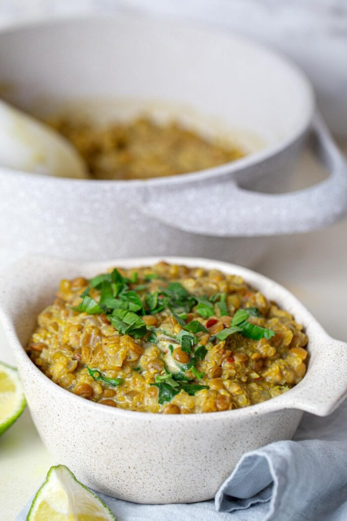 A bowl of vegan curried lentils with quinoa topped with chopped cilantro and a pot of cooked lentils in the background.