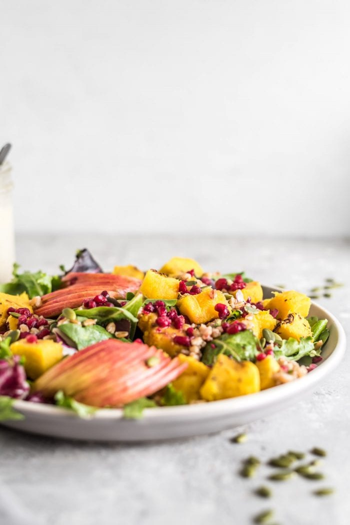Colorful farro salad with apple and roasted squash.