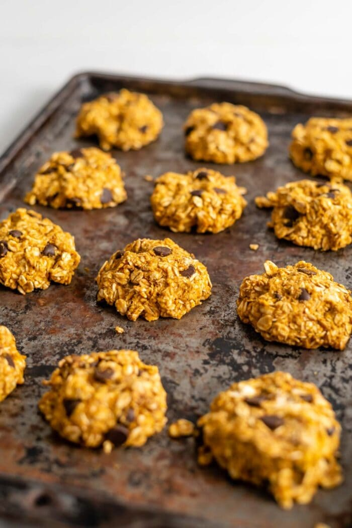 Chocolate chip pumpkin cookies on a baking tray.