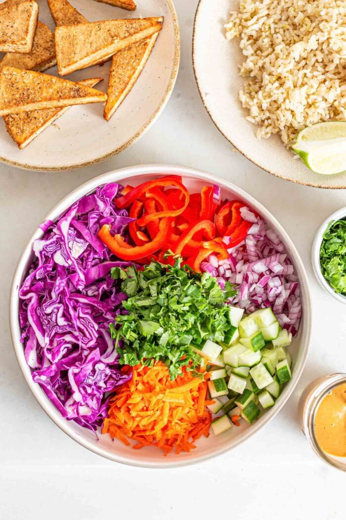 A large bowl of chopped cabbage, carrot, bell pepper, cucumber and red and green onion.