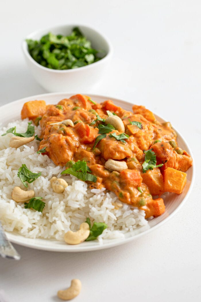 Plate of rice and vegetable korma topped with cilantro and cashews.