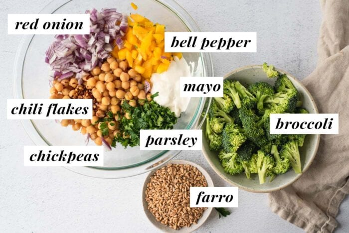 Visual list of ingredients for a chickpea broccoli salad. Each ingredient labelled with text.