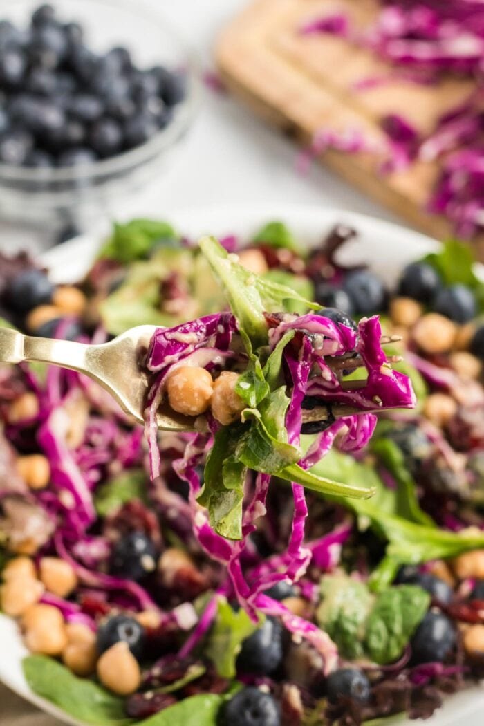 Forkful of blueberry chickpea salad.