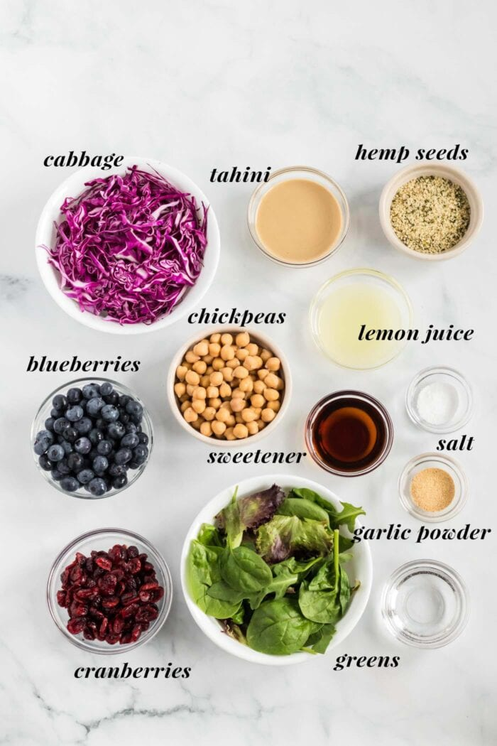 Visual list of ingredients for making a blueberry chickpea salad recipe.