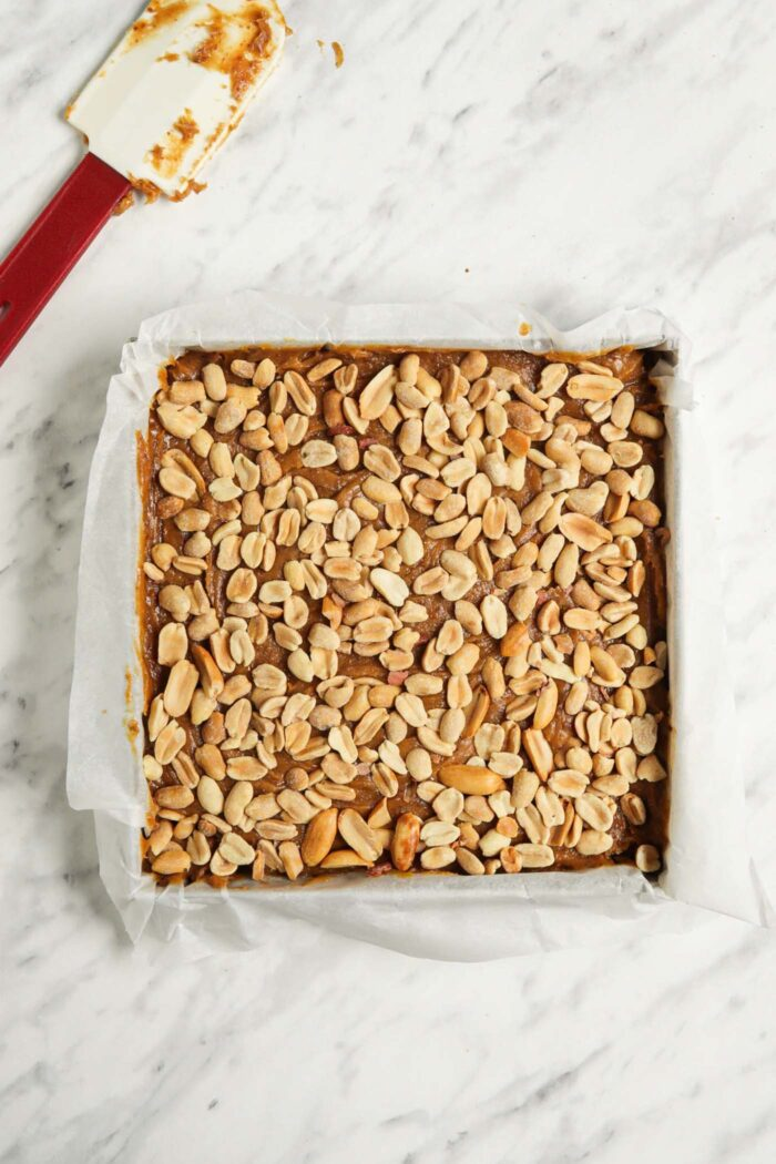 Peanuts spread over a layer of caramel in a baking pan.